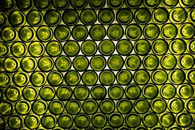 vitivinicultura inertización botellas