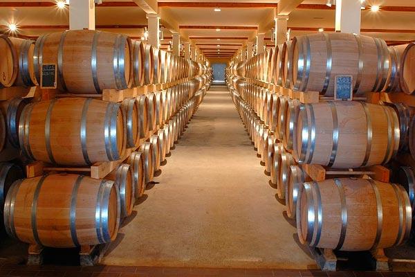 vitivinicultura inertización